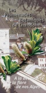 Les Promenades Botaniques / Chandolin