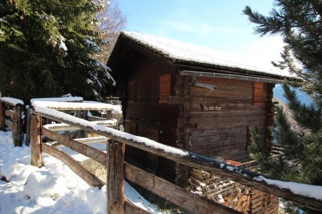 Aotearoa extérieur neige