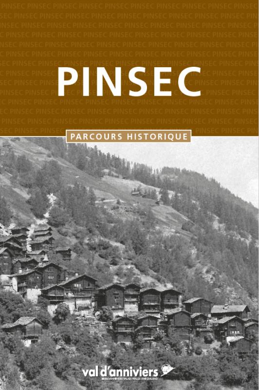 pinsec-6650318